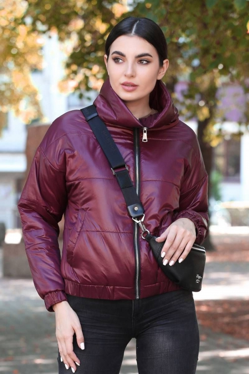 Куртка ДГ-6278 от DressyShop